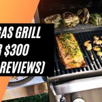 Best Gas Grill Under $300 (2021 Reviews)